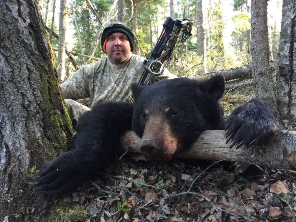 bear hunting trips bear bonez outfitters alberta bear. Black Bedroom Furniture Sets. Home Design Ideas